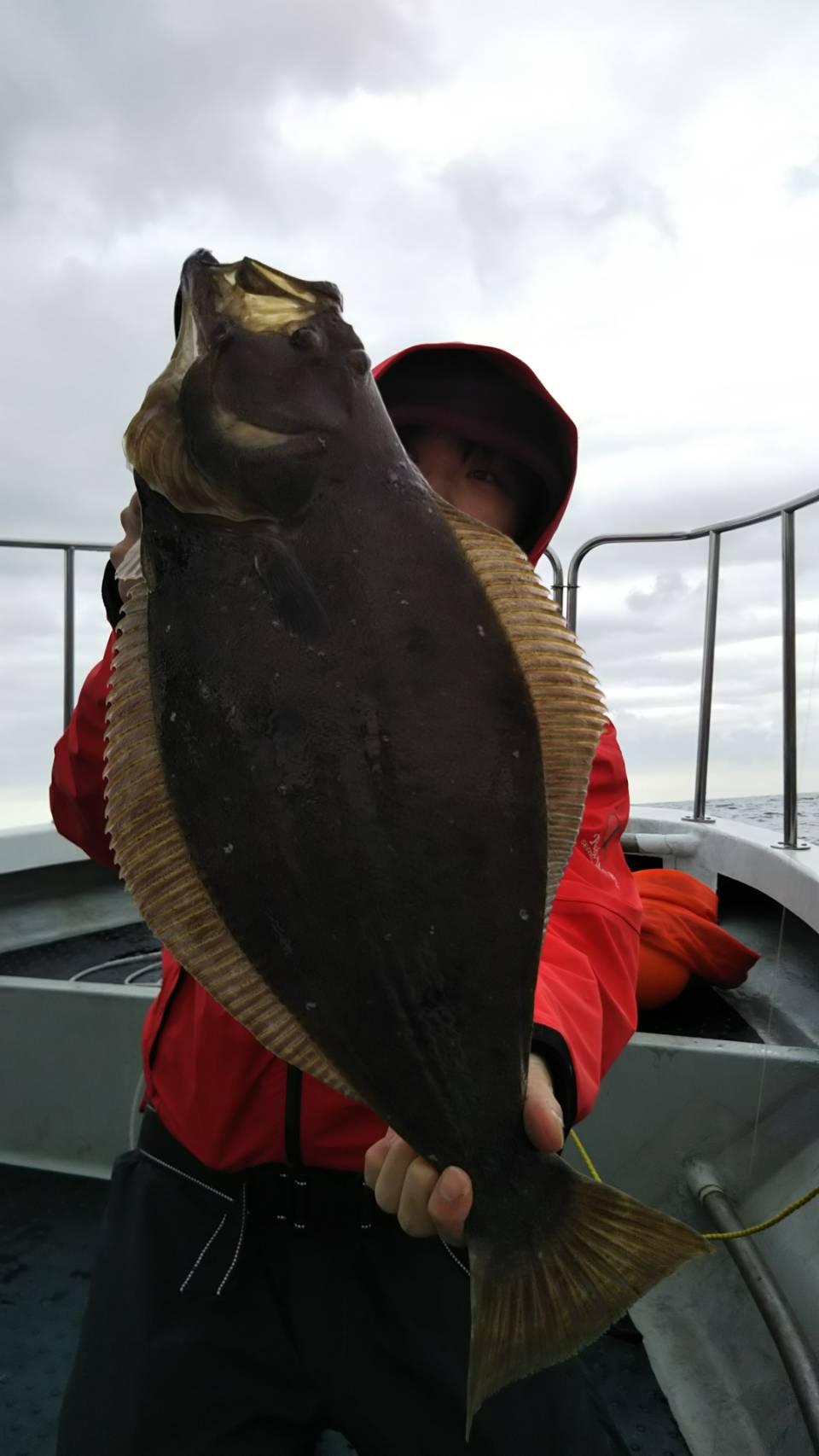 ヒラメを釣るタックルベリーあべちゃん
