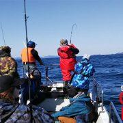 宮城県は金華山遠征ジギング青物釣り|遊漁船オーシャンズラボ