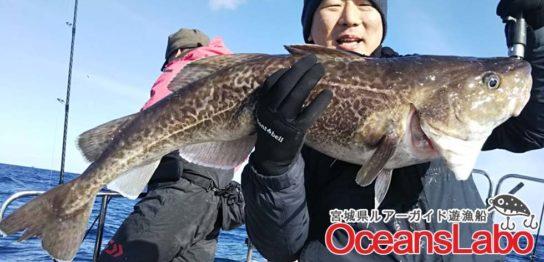 宮城の釣り船オーシャンズラボで行く真鱈ジギング