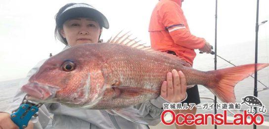 宮城の真鯛釣り釣り船オーシャンズラボ