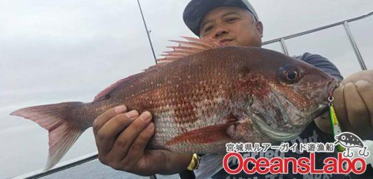 真鯛にサワラに太刀魚に青物&赤物などなど総数52匹で豊かな真鯛釣行でした