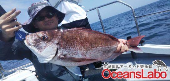 宮城釣り船オーシャンズラボの真鯛ジギング