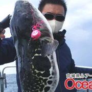 宮城県の真鯛釣り!海の中はもう夏。真鯛の足音が聞こえる。